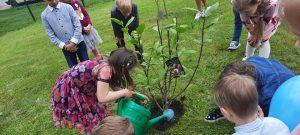 Kodėlčiukai sodina magnoliją